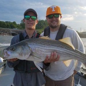 Tennessee Catfish