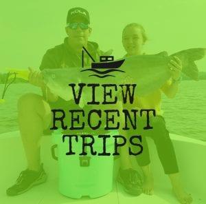 Striper Fishing Guide